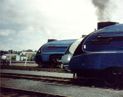 3 Class A4 locos together 3/7/88, York. 4498 Sir Nigel Gresley, 4464 Bittern & 4468 Mallard.