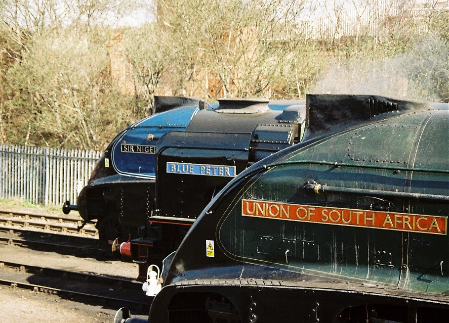 Gresley A4 60007 Sir Nigel Gresley, Peppercorn A2 60532 Blue Peter and Gresley A4 60009 Union of South Africa.