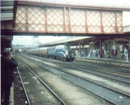 Mallard arrives at Sheffield Midland station  August 4th 1988.
