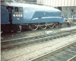 Mallard in Sheffield Midland station  August 4th 1988.