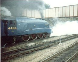 Mallard departs Sheffield Midland station  August 4th 1988.